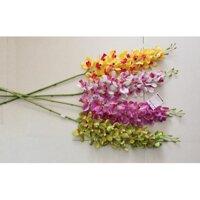 Hoa lan Hoa lụa Thái Lan 5 màu