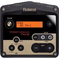 Hộp tiếng trống Roland TM-2