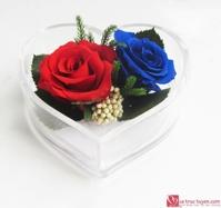 Hoa hồng bất tử hộp tim 2 bông hồng
