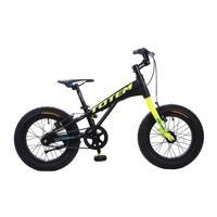 Xe đạp trẻ em TOTEM 805-16