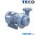Máy bơm ly tâm đầu gang TECO G33-50-2P-3HP, 2Pole