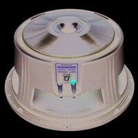 Loa bass P-Audio GST-12500