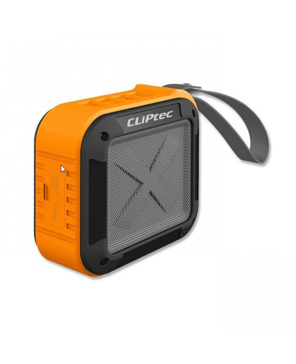 Loa Bluetooth Cliptec PBS262