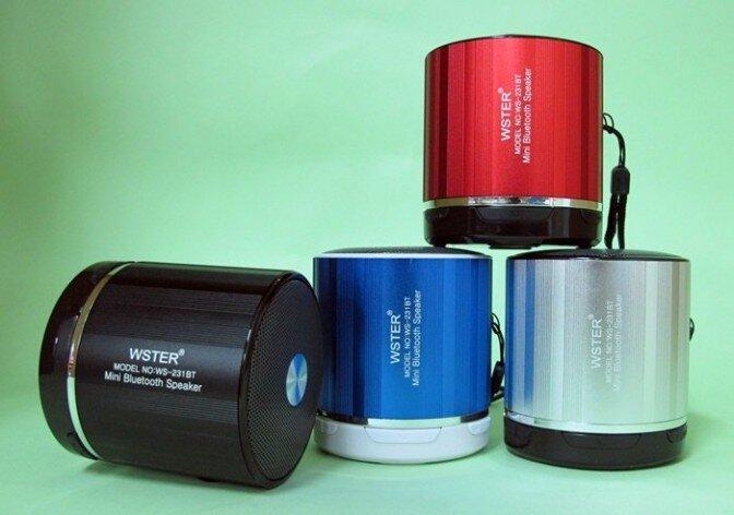 Loa Bluetooth WS-231