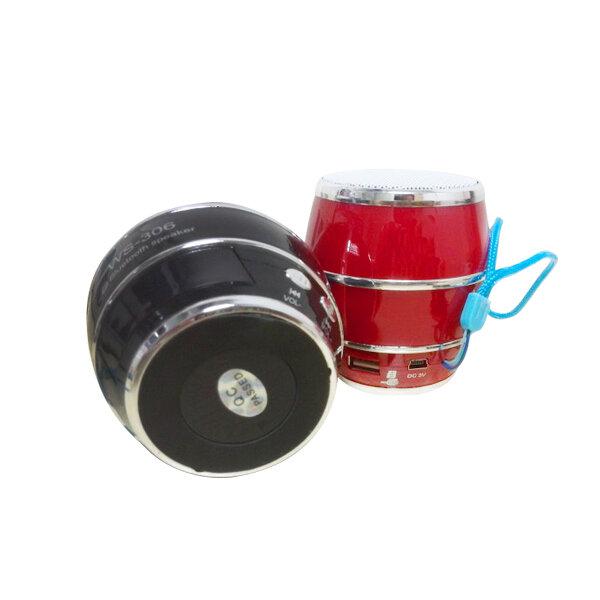 Loa bluetooth WS-306
