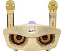 Loa karaoke bluetooth SD-306