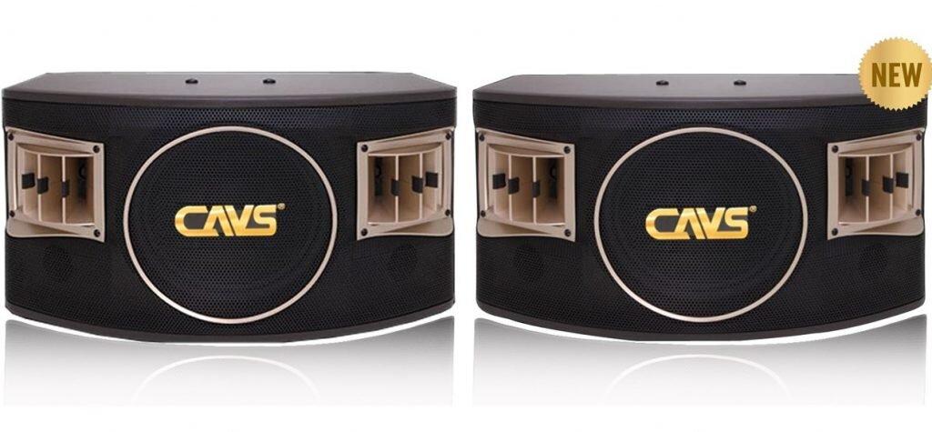 Loa Karaoke CAVS 530SE