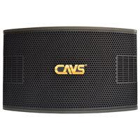 Loa karaoke CAVS A990SE