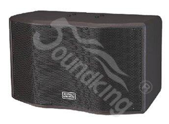 Loa karaoke Soundking SK10