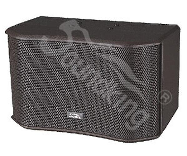 Loa karaoke Soundking SK12