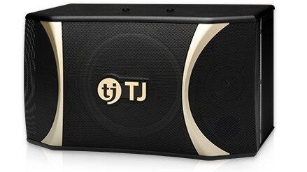 Loa Karaoke TJ G100