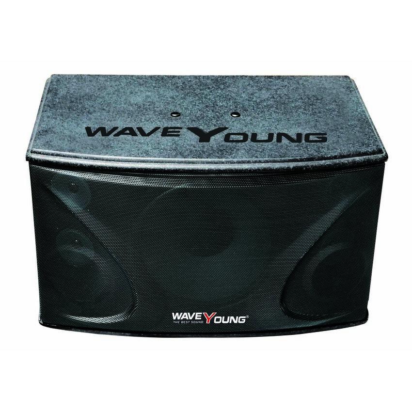 Loa karaoke WaveYoung PS-801