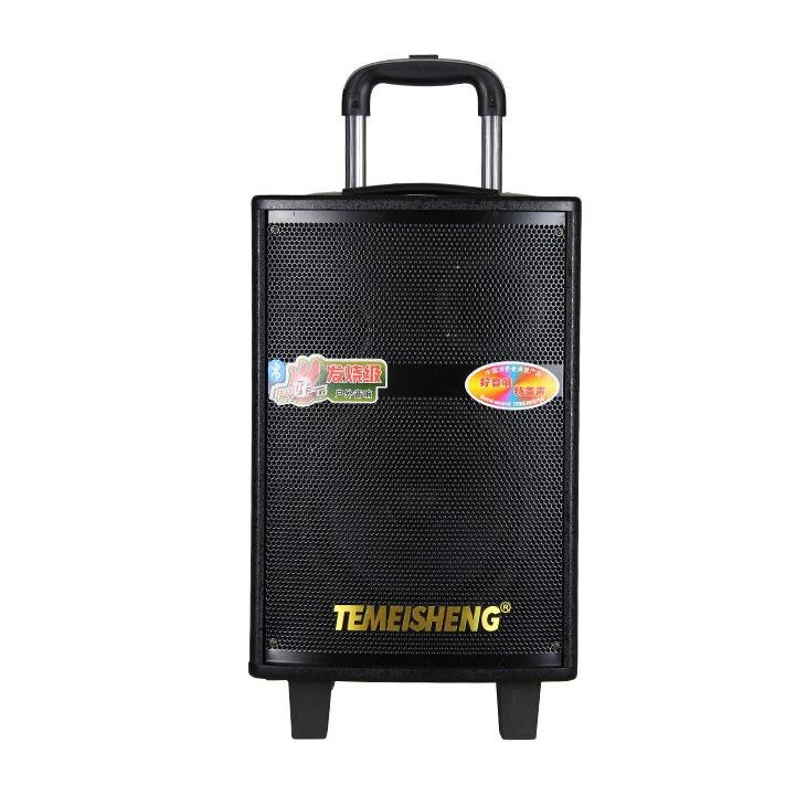 Loa kéo di động Temeisheng QX-0807