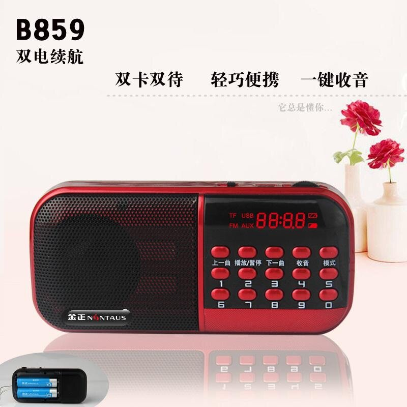 Loa nghe nhạc B859