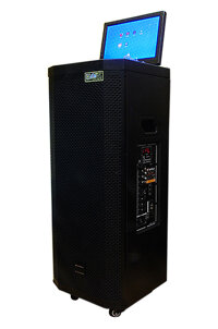 Loa vali có màn hình Sansui SA2-212