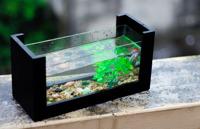 Bể cá để bàn mini