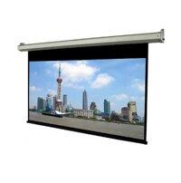 Màn chiếu Điện Dalite PW250ES - 250 inch (Kích thước: 5,10m x 3,8m)