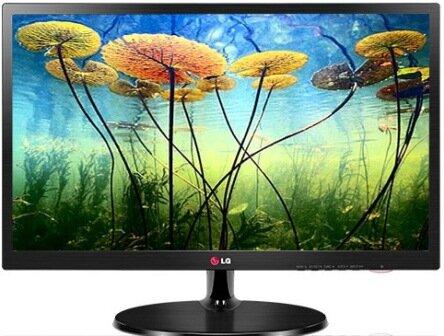 Màn hình máy tính LG 19EN43S - LED - 18.5 inch - 1366 x 768