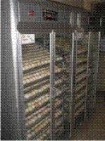 Máy ấp trứng thông thường ATSSII-1000