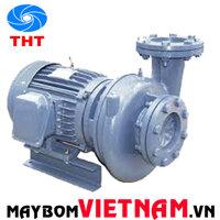 Máy bơm ly tâm dạng xoáy đầu gang NTP HVP3125-137 205 50HP