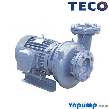 Máy bơm ly tâm đầu gang TECO G31-50-2P-1HP, 2Pole