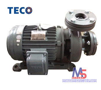 Máy bơm ly tâm Teco đầu gang 4 cực G325-200-4P-25HP