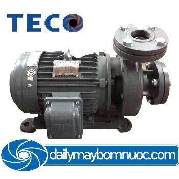 Máy bơm ly tâm Teco đầu gang G320-250-4P-20HP 20HP ( 4 cực)