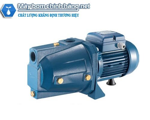 Máy bơm nước đầu lợn Pentax CAM 100 750w