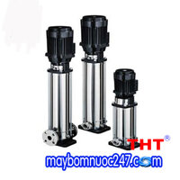 Máy bơm nước ly tâm trục đứng đầu inox EBARA EVMSG 5 11N5Q1BEGE/2.2 3HP