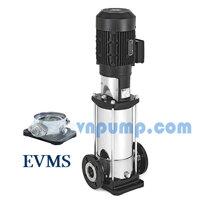 Máy bơm trục đứng Ebara EVMS 3 17N5Q1BEGE/2.2 3HP