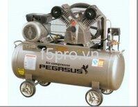 Máy nén khí Pegasus TM-V-0.25/8-180L