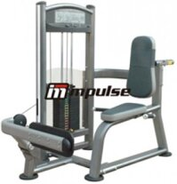 Máy tập bắp chân Impulse IT9316