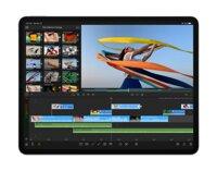 Máy tính bảng iPad Pro 11 (2020) - 512GB, Wifi