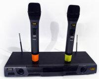 Micro không dây CAVS PG99