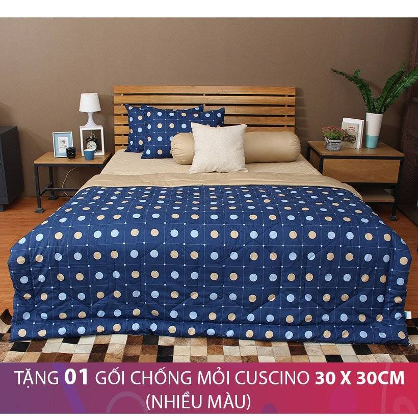 Bộ chăn drap bọc Cuscino COTTON151 160 x 200 cm