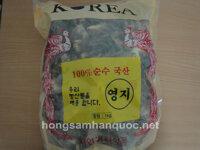 Nấm linh chi bao tử Hàn Quốc