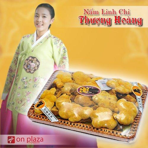 Nấm Linh Chi Thượng Hoàng Hàn Quốc 500 gr