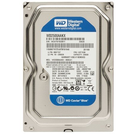 Ổ cứng HDD Western WD Caviar Blue 250GB 7200Rpm, SATA3 6Gb/s, 16MB Cache