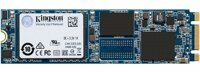 Ổ cứng SSD Kingston SUV500M8 240GB