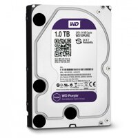 Ổ cứng Western Digital Purple - 1TB, 64MB Cache