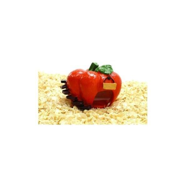 Phòng ngủ quả bí đỏ AM018