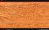 Sàn gỗ công nghiệp Wittex T343