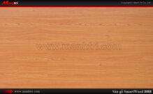 Sàn gỗ Smart Wood 8008