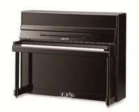 Đàn Piano Ritmuller 121RB