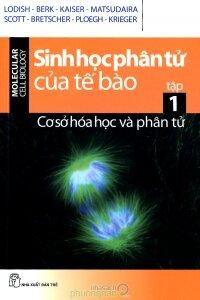 Sinh học phân tử của tế bào (T1): Cơ sở hóa học và phân tử - Nhiều tác giả