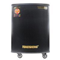 Loa kéo di động Temeisheng GD12-05