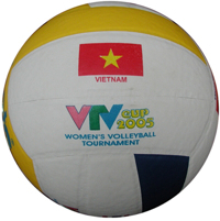 Bóng chuyền Động Lực da PVC in VTV DE201