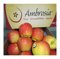 Táo Ambrosia Mỹ