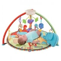 Thảm chơi cho bé Fisher-Price Open Top Musical Discovery Gym