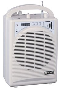 Thiết bị trợ giảng Auvisys AM-20UDFM